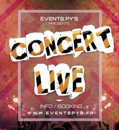 Organisation de concerts, apéro concert, un groupe, une fanfare, en solo, en duo, en déambulation, festif, acoustique, ... et dans tous les styles pop , rock, blues, chanson francaise, reggae,